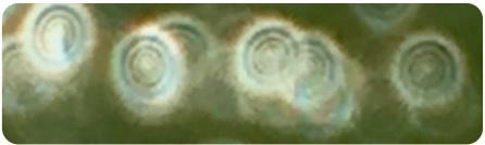 Мельчайшие капли раствора имеют многослойную молекулярную архитектуру